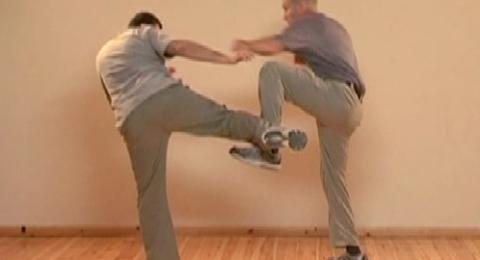 Leg Defenses Against Kicks P2