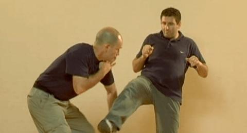 Defenses Against Regular (Front) Kicks P5